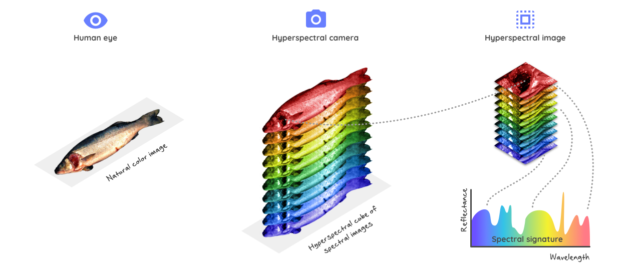 hyperspectral-imaging